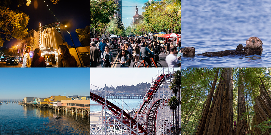Bay Area Attractions
